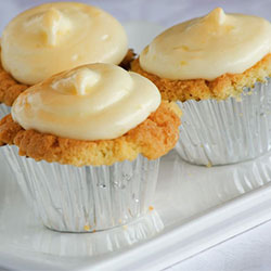 Gourmet iced cupcake thumbnail