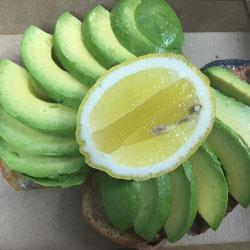 Platter of avocado on organic spelt toast - serves 10 thumbnail