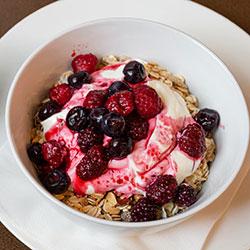Fruit and yoghurt bowl - 500 ml thumbnail
