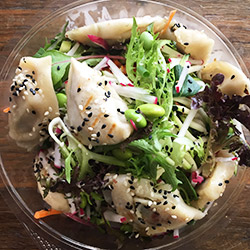 Dum dum dumpling salad thumbnail