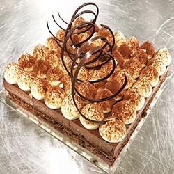 Dark chocolate and hazelnut mousse square cake  thumbnail