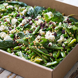 Green beans, sugar snaps, soy beans, asparagus and leek salad thumbnail