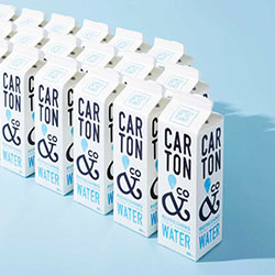 Carton and Co Boxed water - 500ml thumbnail