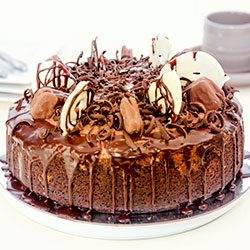 Tim Tam cheesecake thumbnail