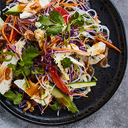 Asian chicken and slaw thumbnail