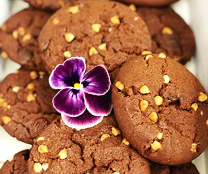 Fresh baked cookies - mini thumbnail