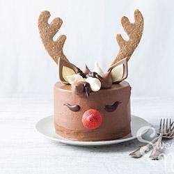 Red Nose Reindeer Cake thumbnail