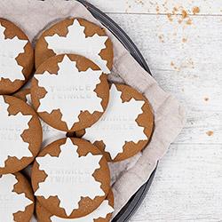 Twinkle Twinkle Gingerbread Cookies thumbnail