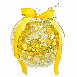 Orchid fishbowl thumbnail