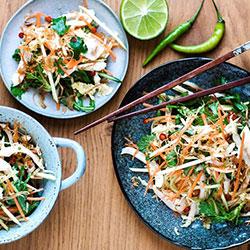 Vietnamese chicken slaw thumbnail