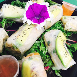 Rice paper roll platter - serves 6 to 8 thumbnail