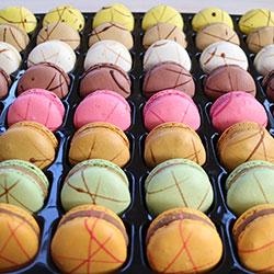 Gourmet macarons thumbnail