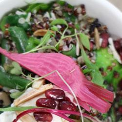 Sprout and quinoa salad - individual 750 ml box thumbnail