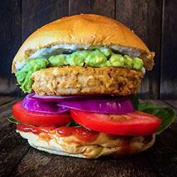 Salsa and avo burger thumbnail