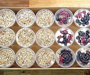 Individual yoghurt pots - 300ml thumbnail