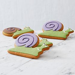 Sammy the snail cookies thumbnail
