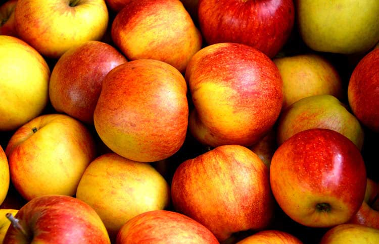 Fresh office fruit - apples keep you awake
