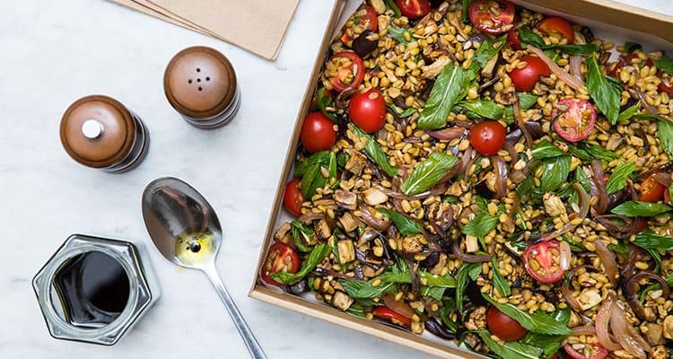 Healthy salads from Transform Kitchen
